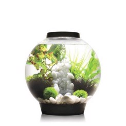 BiOrb classic bowle m/LED MCR 30 Liter sort