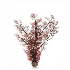 Biorb sea fan stor