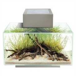 Fluval EDGE sort 23ltr med LED lys