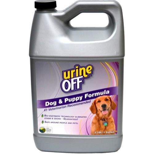 urin off hund