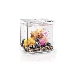 BiOrb Cube 30 LED MCR clear