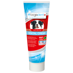 Bogadent dental creme mint - tandpasta