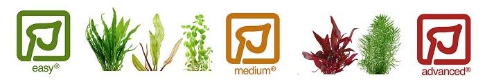 Plantetyper easy medium advanced tropica