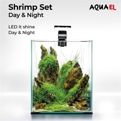 Shrimp set 20 - Day and Night - akvarium sort